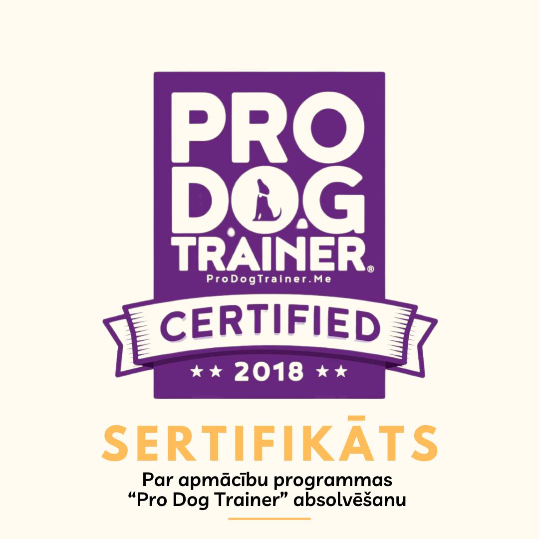 AbsoluteDog - Pro Dog trainer kursu absolvēšanas diploms